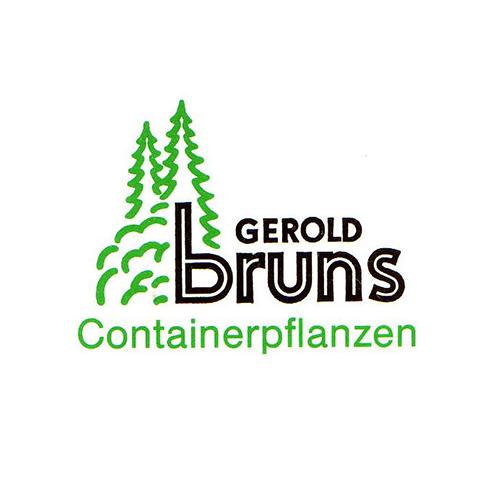 Gerold_Bruns