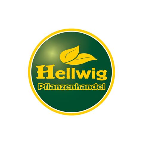 Hellwig
